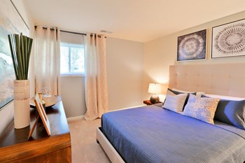 3101 Windsor Blvd 3 Beds Apartment for Rent Photo Gallery 1