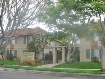 241 Avocado Street 1-3 Beds Apartment for Rent Photo Gallery 1
