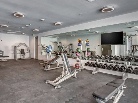 The Roy Lifestyle - Fitness Center