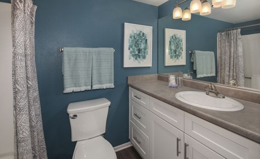 Pet-Friendly Apartments in Rancho Cucamonga CA for Rent - Creekside Alta Loma Apartments Bathroom