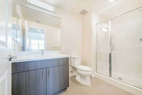 Folsom Apartments for Rent - Hub Apartments - Bathroom with Standing Shower, White Vanity Sink, and Large Mirror