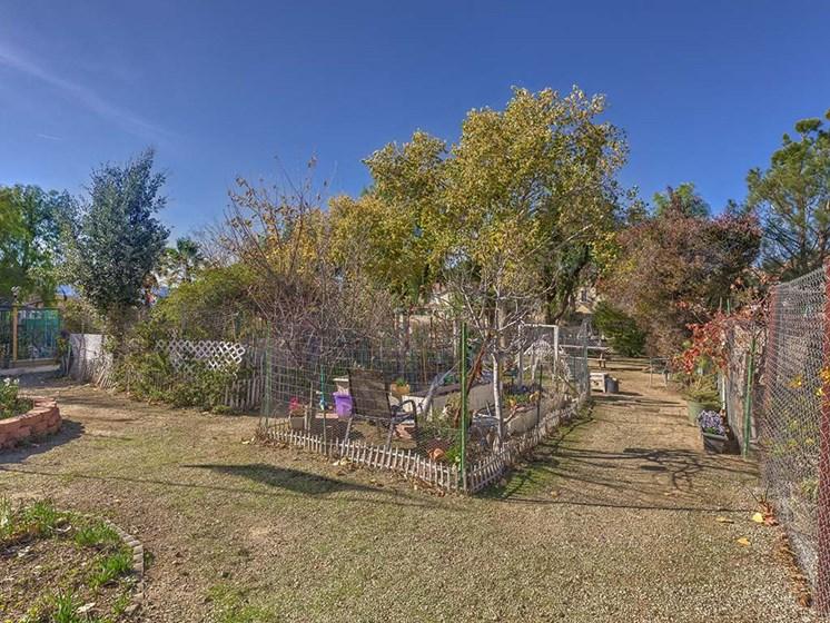 Community Garden Area  l Vintage at Bouquet Canyon Senior Apartments
