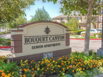 26705 Bouquet Canyon Road 1-2 Beds Apartment for Rent Photo Gallery 1