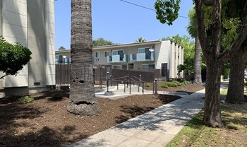 985-1009 N. Raymond Ave 1-2 Beds Apartment for Rent Photo Gallery 1