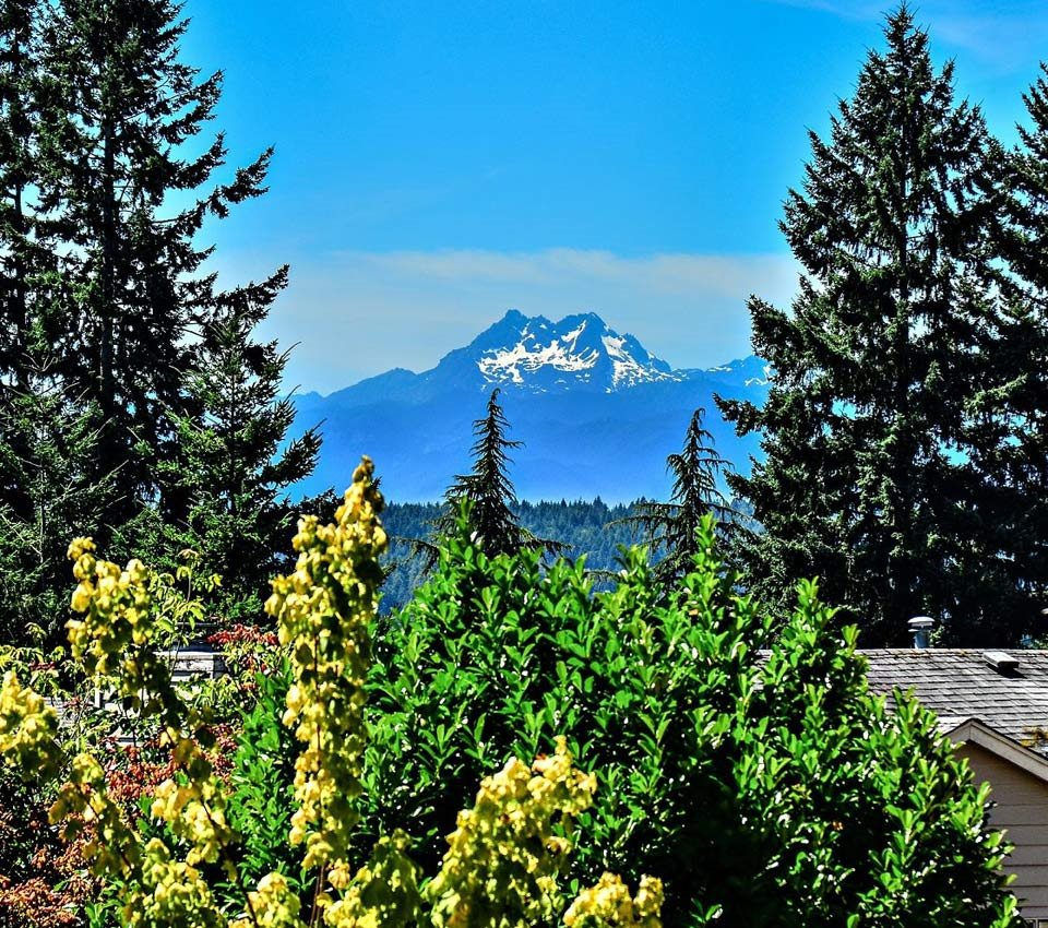 Reserve at Bucklin Hill Apartments_Silverdale WA_Mountains