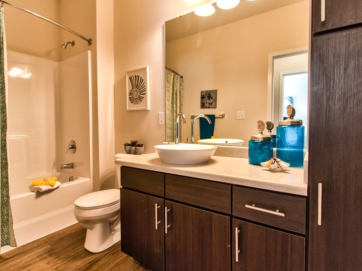 Spacious Bathroom at Aventura at Maryland Oaks, Missouri, 63146
