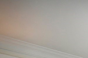 Designer living room Round Rock apartments, TX 78681