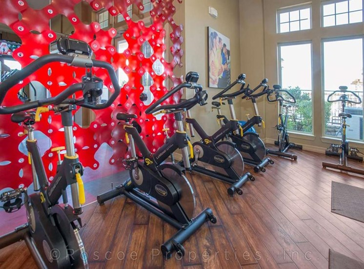 Fitness Center with Updated Equipment at Madrone, Austin,Texas