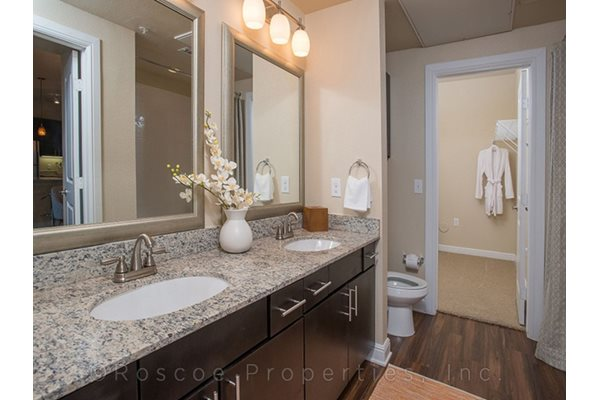 Granite Counter Tops in Kitchen and Bath at Madrone, Austin