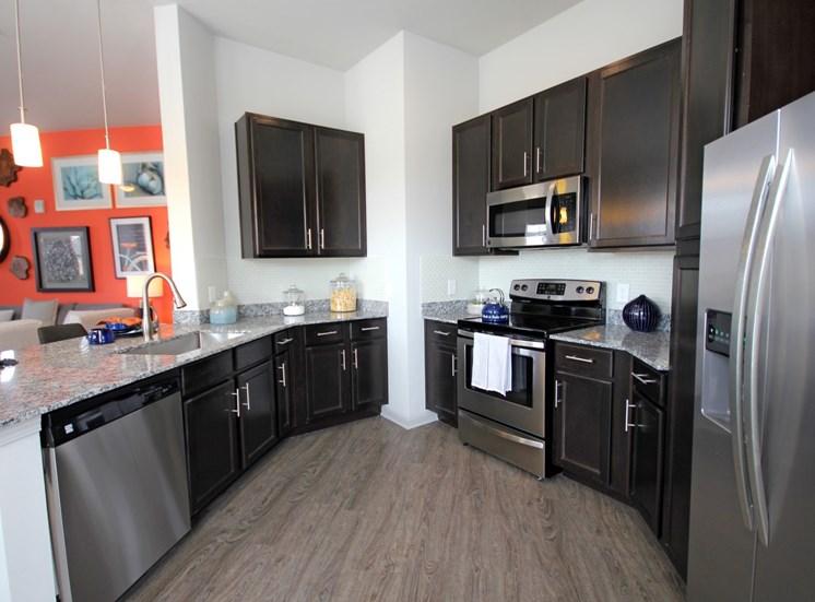 kitchen luxury apartments in castle rock