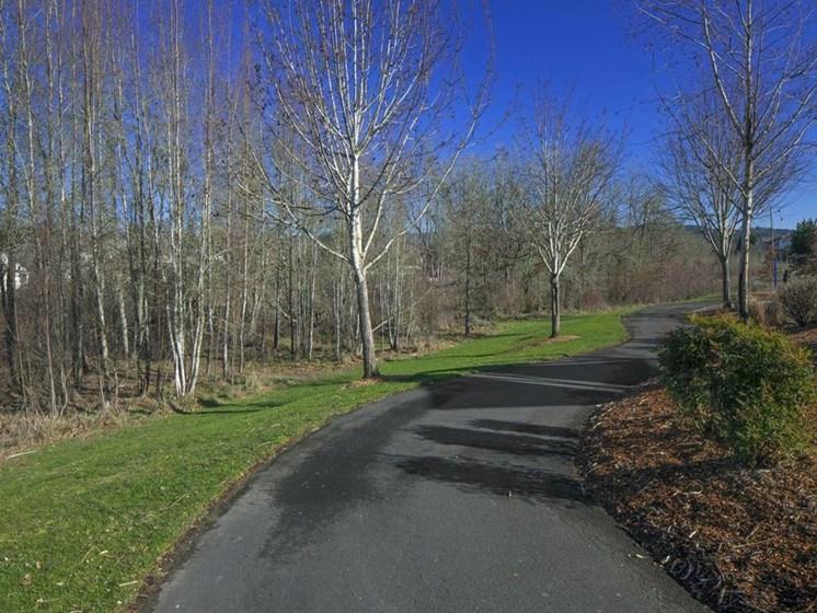 meandering pathway
