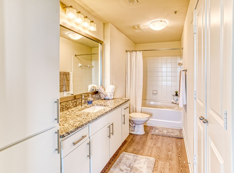 Lofts at Uptwon Altamonte Upgraded Bathroom_View_3