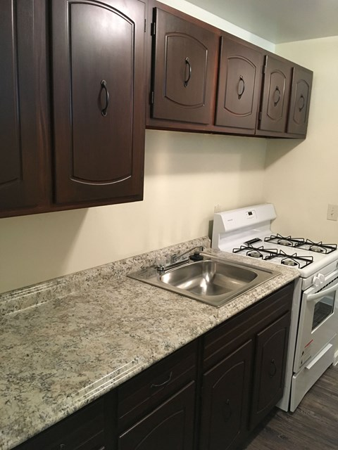one style of rehabbed apartment kitchen