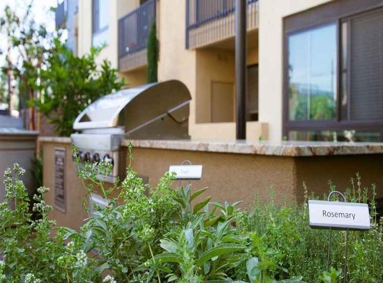 BBQ Grills and Herbs at Terrena Apartment Homes in Northridge CA