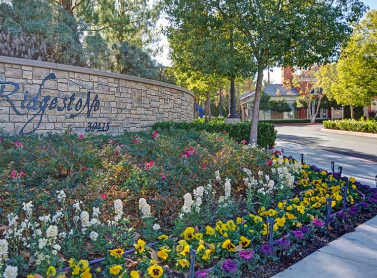 1, 2, or 3 bedroom homes at Ridgestone Apartments in Lake Elsinore CA