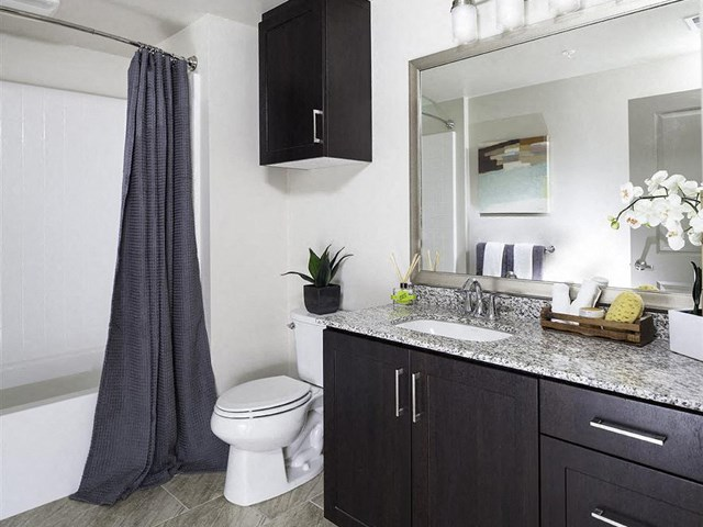 Bathroom at Skye Apartments in Vista CA