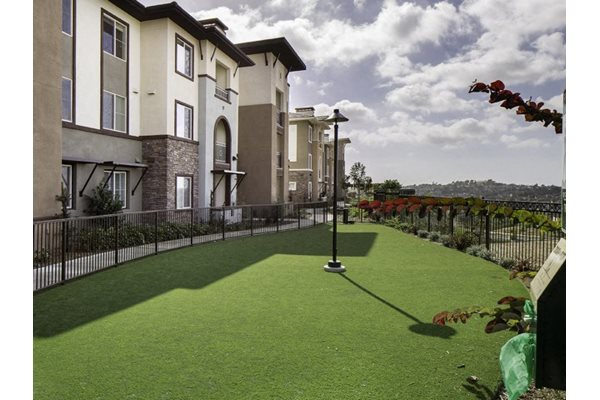 Skye Apartments AMENITY 1