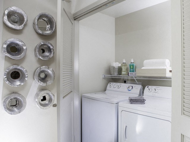 Washer and Dryer at Skye Apartments in Vista CA