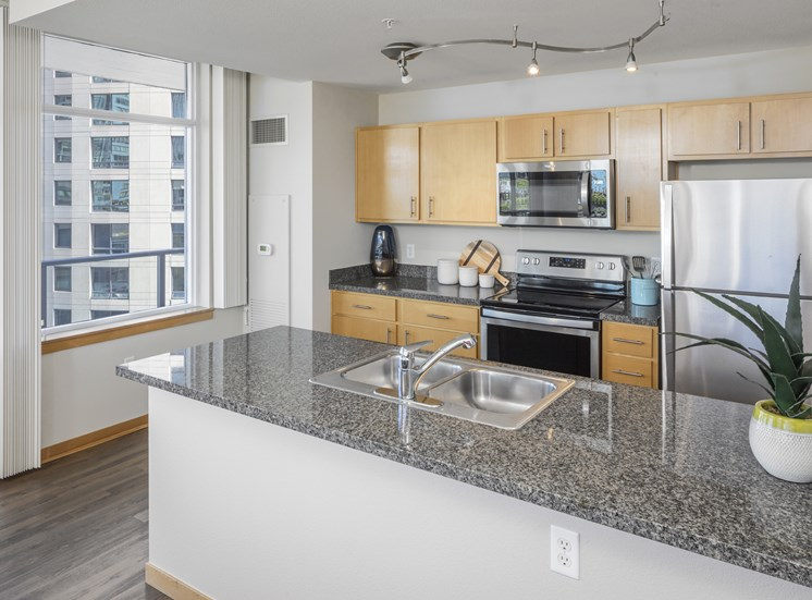 Apartments with Modern Kitchen at Riva on the Park