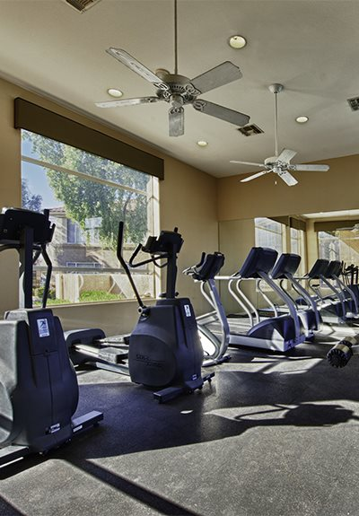 Cardio Equipment at Vista Grove, Arizona, 85204