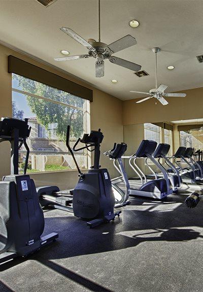 Cardio Equipment at Vista Grove, Arizona, 85204