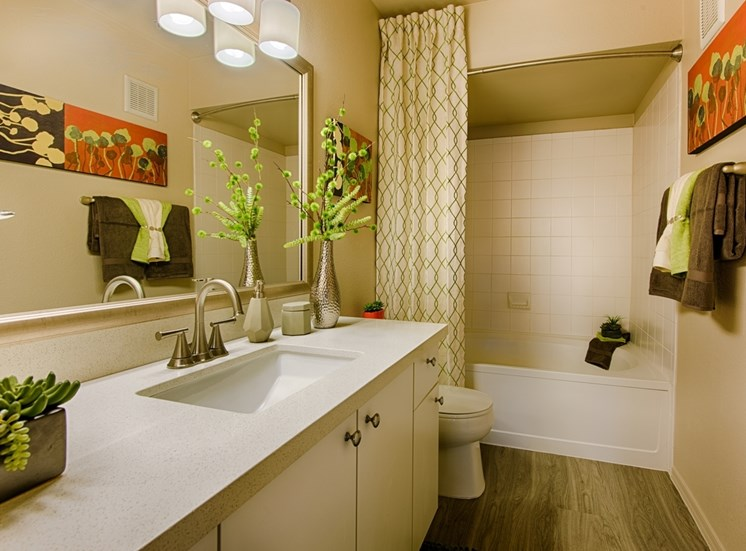 Bathroom With Custom Vanity Lighting at Aventura, Arizona