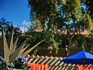 Poolside Cabanas at Aventura, Avondale, AZ