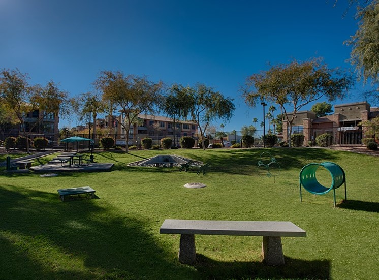 Pet-Friendly Park at Residences at FortyTwo25, Arizona
