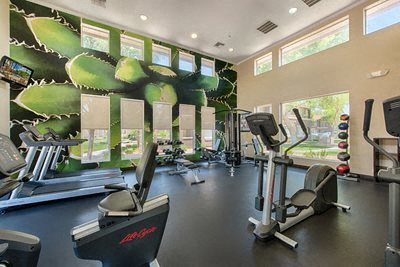 Stonebridge Ranch Apartment Homes for Rent in Chandler, AZ - Fitness Center