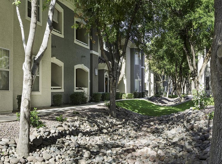 Exterior landscaping at Cambria Apartments in Gilbert AZ