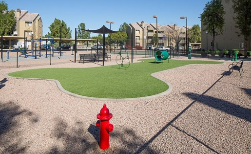 Dog park at Array South Mountain Apartments in Phoenix AZ