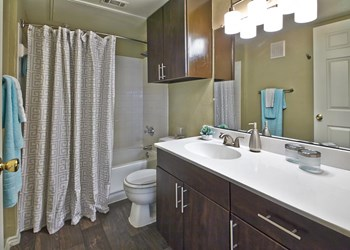 1531 Texas 121 Business 1-3 Beds Apartment for Rent Photo Gallery 1
