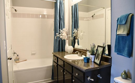 Windsor Cypress Apartments for rent in Houston, TX - bathroom