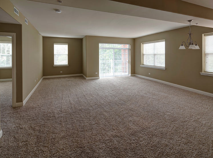 Plush Carpeting at Two Itasca Place Apartments, 2 Itasca Rd, IL