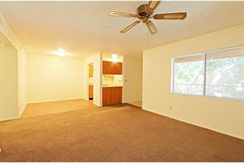 1802 West Cholla Steet 1-2 Beds Apartment for Rent Photo Gallery 1