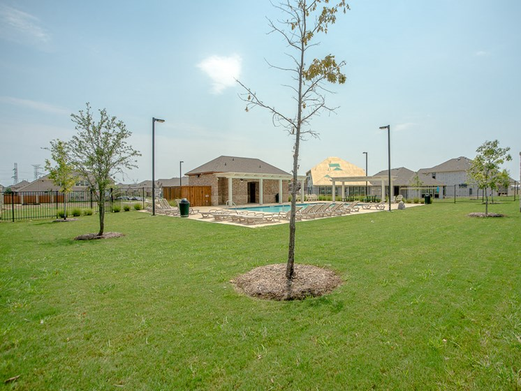 Open Green Space at Cottages at the Realm, Homes for rent in Castle Hills, TX 75056
