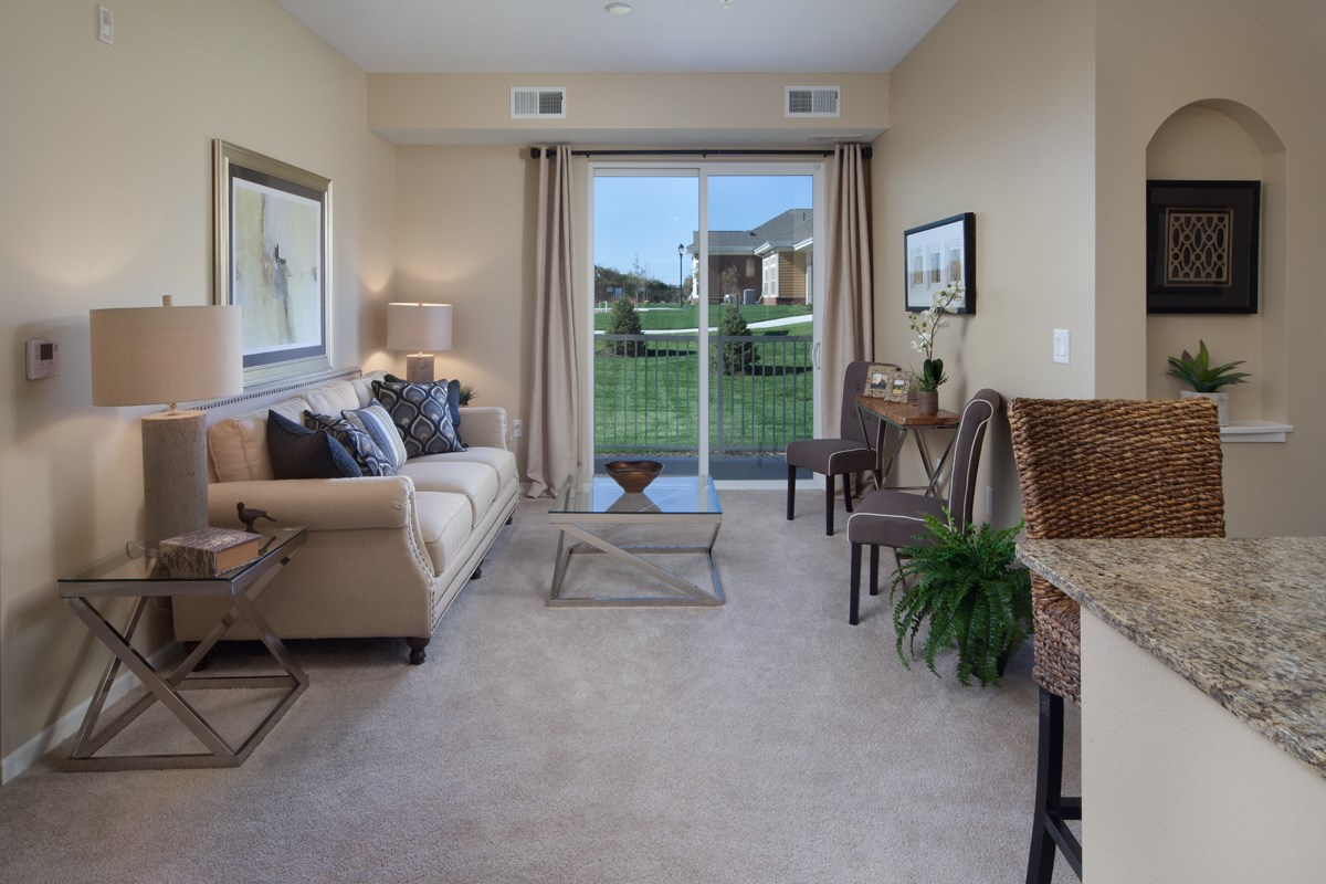 Living Room at Skye at Arbor Lakes Apartments in Maple Grove, MN