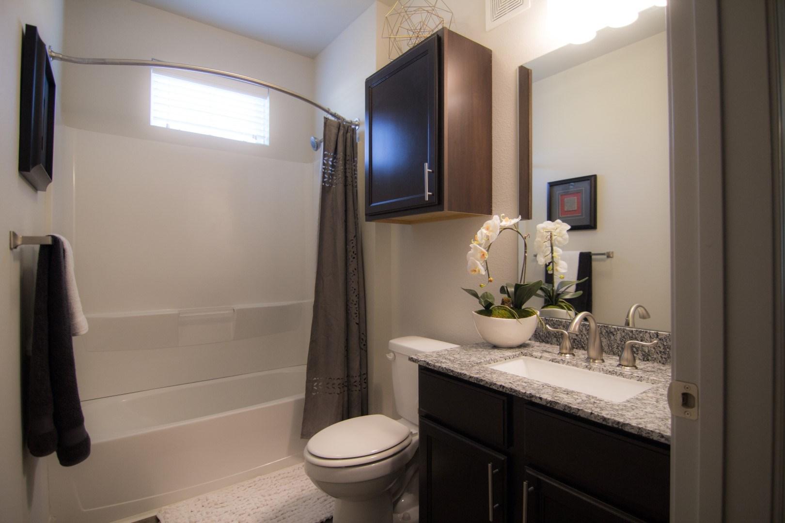 bathroom apartments in louisville