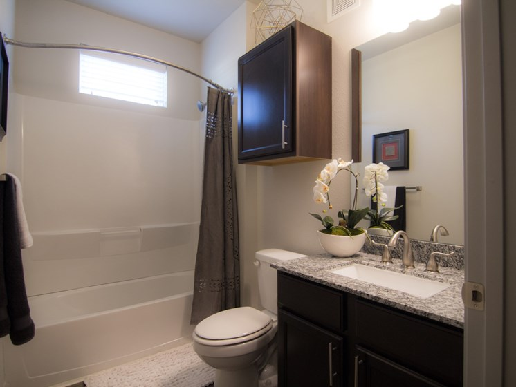 bathroom apartments in louisville