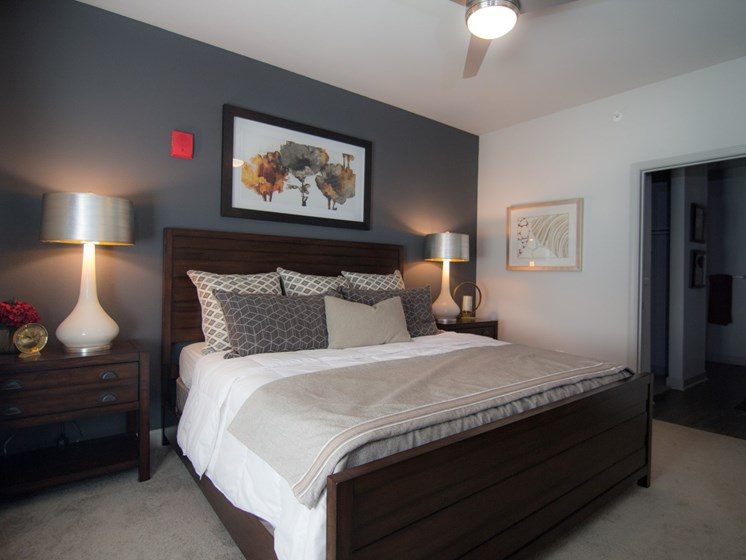 bedroom apartments in louisville