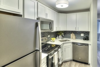 1130 S Williams Street 1 Bed Apartment for Rent Photo Gallery 1