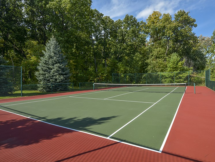 On-Premise Tennis Court Surrounded by Trees