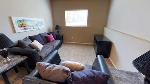 second living area, basement, couches