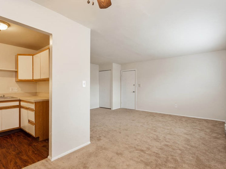 Apartments for rent at Windsor Arms feature ceiling fans and carpet.