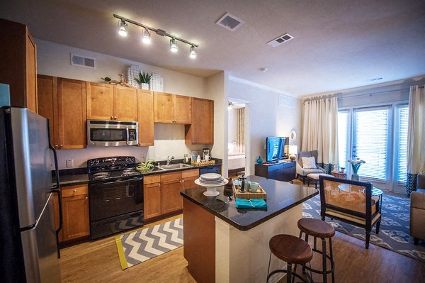 Kitchens With Energy Efficient Black and Stainless Steel Appliance Package at The Encore Apartments, Plano