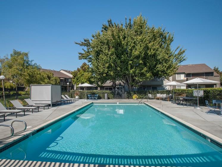 Tranquil Resort Style Pool at Sagemark, California
