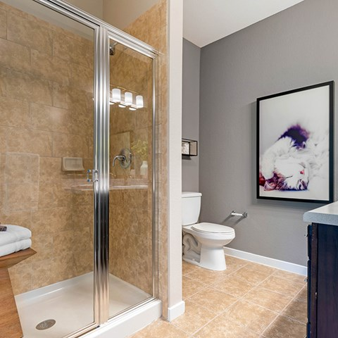 Modern Stand Up Shower at Jamison at Brier Creek, Raleigh