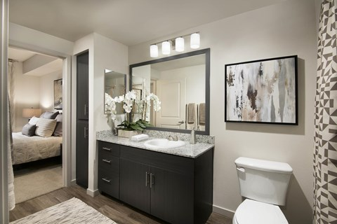 Luxurious Bathrooms at Trellis, Phoenix, Arizona