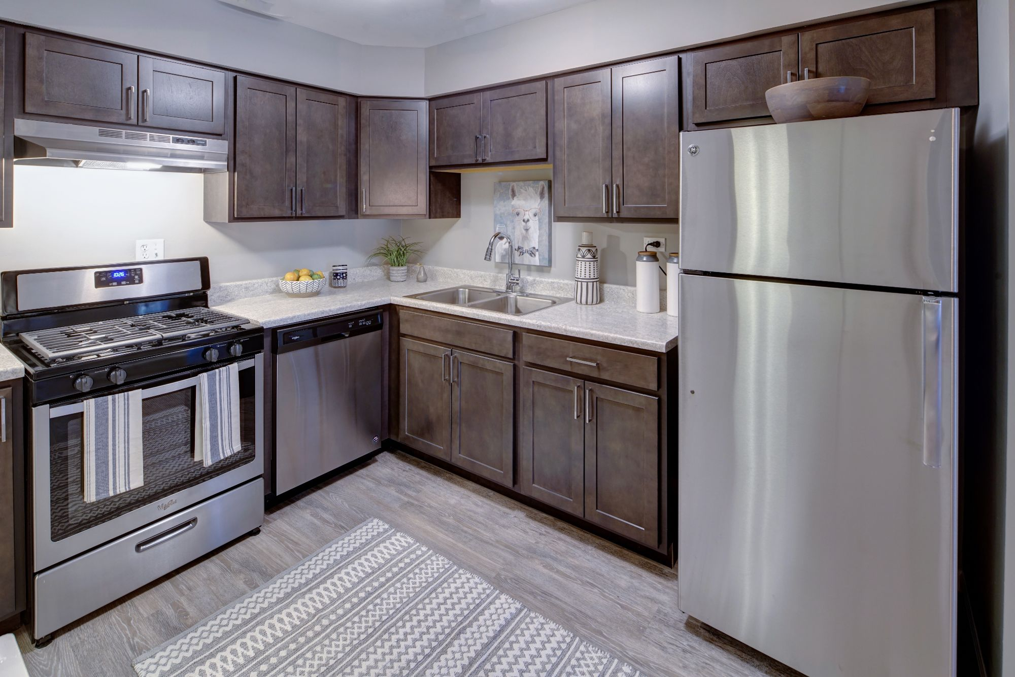 Stainless Steel Appliances at Carol Stream Crossing, Carol Stream, IL