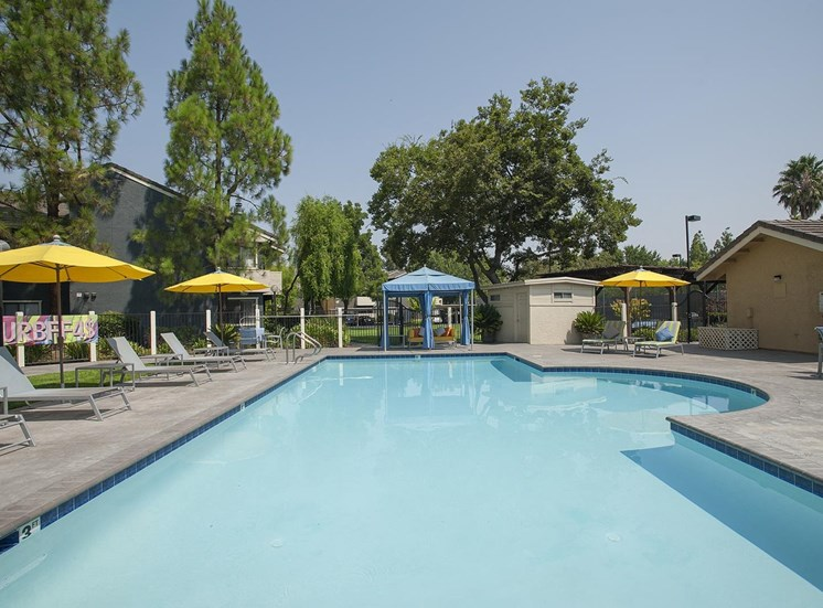 Expansive Swimming Pool at The Edge, Davis,California